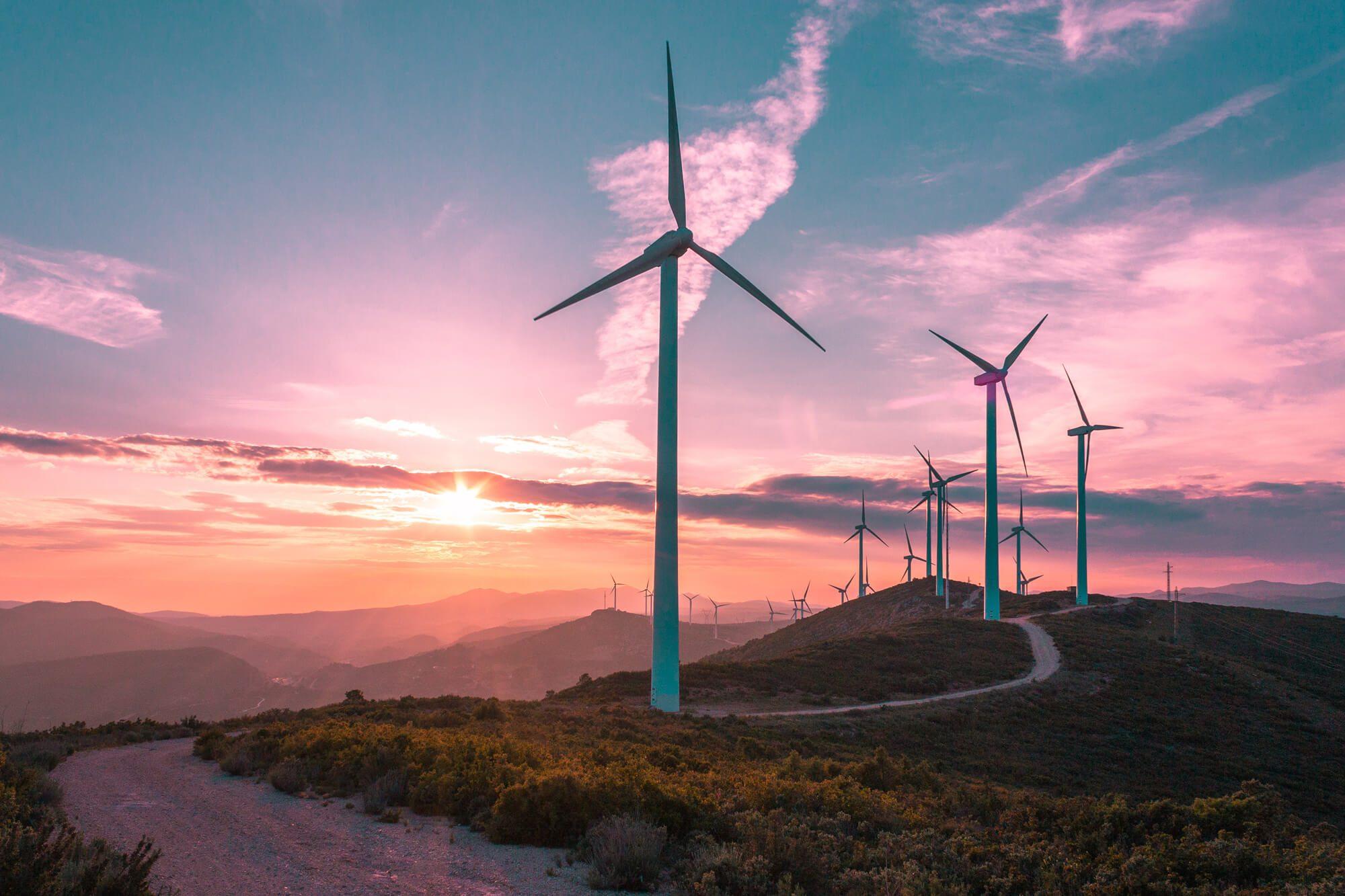 wind-turbines-on-beautiful-sunny-summer-lg